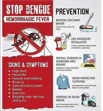 #dengue #prevention dengue prevention tips #health