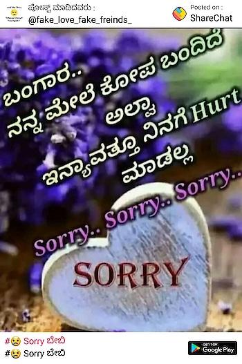 sorry  sorry  sorry
