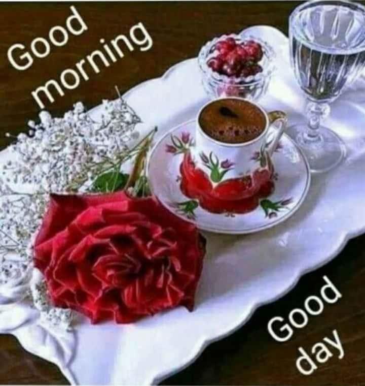 Good Morning, Happy Monday! #goodmorningpost #goodmorning-roposo #dailywisheschannel #dailywishes #monday #haveaniceday