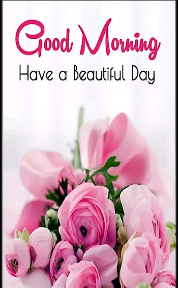 Have a beautiful day