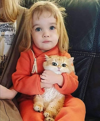 #babylove #kitten #cute