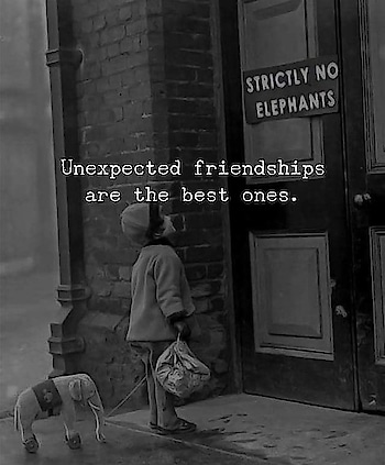 #unexpected friendship 😍✌️
