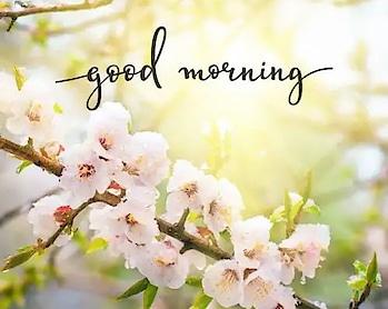 #goodmorning #good-morning #haveagoodday #keepsmiling