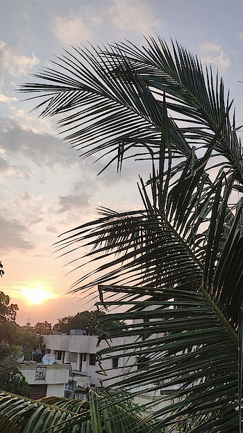 Evening Vibes & Nature #evening #eveningtime #eveningvibes #eveninggown #nature #natural #naturepgotography #nature_lovers #naturelover #tourist #tourists #travell #travelling #roposo #roposostar #roposo-beats #roposopic #roposopicture