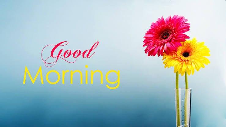 #wish_you #wishingyouall #wishesh #beautifulmorning #beautifulmoments #beautifulmessage #mornings #morning-special #morningselfie #morningstatus #morningwishes #morningtea #morningview #morningthoughts #roposo-masti #roposo-rising-star-rapsong-roposo #good_morning #roposo #roposostar #roposostars #roposo-beats #filmistaan #helogoodmorning#roposogoodmorningwish #wishes #wish #wishes-goodmorning #goodmorning #goodmorningpost #hifriends-follow-meee #hihi #goodmorning-roposo #goodmorningworld #goodmorningfriends #morning #morningpost #goodmorningallfriends #goodmorningallmyfriends #goodmornig #goodmorningposts #roposogoodmorning #roposogoodmorningpost #roposogood----morning #roposogoodmorningpost