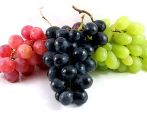 """Grapes are known as 'The Queen of Fruits"""". . This wonderful and flavorful fruit not only adds vibrance and appeal to your food, but is also very beneficial.  . . Grapes come in different colors and forms. There are red, green, and purple grapes, seedless grapes, grape jelly, grape jam and grape juice, raisins, currents, and sultanas. . Grapes contain immunity-boosting vitamin C, simple sugars that provide instant energy, and antioxidants that are anti-inflammatory.  . . Benefits of Eating Grapes 👇👇 . . 🍇 Provides Protection Against Sunburns 🍇 They are a good source of fiber,potassium, and a range ofvitaminsand other minerals. 🍇 Reverses Aging 🍇 Makes Skin Supple 🍇 Grapes also contain vitamins B and A, and they are high in water content. 🍇 Combats Uneven Skin Tone 🍇 Helps Lighten Scars 🍇 Adds Shine  Hair 🍇 Fights Stubborn Dandruff 🍇 Relieves Migraine 🍇 Treats Alzheimer's Disease 🍇 Prevents Indigestion 🍇 Fights Breast Cancer 🍇 Prevents Eye Degeneration 🍇 Treats Diabetes 🍇 Lowers Cholesterol In Blood 🍇 Heals Kidney Disorders 🍇 Relieves Asthma 🍇 Helps Fighting Viral Infections 🍇 Relieves Constipation . . . . Grapes are available year round. Select grapes that are tight to the touch and free of wrinkles. The best way to eat grapes is as a fresh fruit.  . . . . . . . . . . . . . . . #grapes #skincaretips #healthtips #healthylifestyle #healthcaretips #benefitsofgrapes #weightloss #fitness #haircare #haircaretips   #bangalorebeautyblogger #mumbaibeautyblog #bangalorebeautyblog #indianbeautyblog #indianbeautyblogger #makeupadda #bangaloreinstagrammers #mumbaiinstagrammers #bangaloreblogger #mumbaiblogger #"""