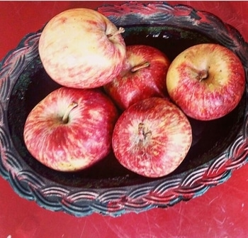 Some apples and some more red . . #FoodBlog #FitnessBlog #FoodBlogger #IndianFoodBlogger  #InstaBlogger #Instagram #RoposoBlogger #RoposoLove #SoRoposo #Instagrammers #InstaGo #Fashionblogger #Foodie #FoodGram #StayFit #StayHealthy #Health #FitnessRegime #Fitness #Follow #FollowMe #followforfollow #Apples