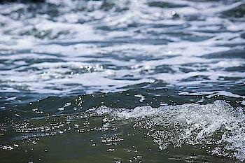 #mood#beachside#seashore#seashell#sunnyday#evenglook#sand#photogenic#natural-look#naturelover#love-photography#likeforlike#roposo-style#roposolove#roposogal#roposomood#roposolook#followmeonroposo#roposo#dontforgettofollo🌊📷