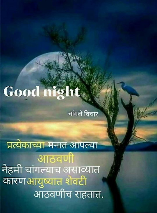 good night ❤️