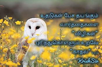 #dailywisheschannel #daily #dailyupdates #love #lovelyrics #lovelines #soulfullquotes #soluful #tamilkavithai #roposo-tamil #boyslove #girlslove #kadhale #tamilkavithaigal #sadquotes #sadlove #sadlines #superline