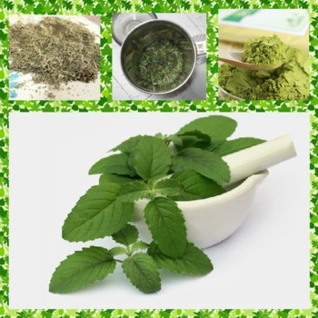 HOW TO MAKE TULSI POWDER AT HOME: 1)Making tulsi powder is an easy process. you will need 2-3cups of tulsi leaves. 2)Wash the leaves with clear water so that dust,dirt can be removed. 3)Once you have washed them properly,keep these tulsi leaves in the sunlight. 4)It takes to 3-4days for the tulsi leaves to get completely dried and lose the moisture.  5)To check,if the leaves are fully dried or not you can break a leave and try to mash it.If it does easily then the leaves are dried completely. 6)Take these dried leaves and put them grinder,Grind the leaves till you get powder. This is the tulsi powder.  This powder can be use to prepare tulsi face pack,Scrubs and remedies to cure pimples, blemishes,pigmentation etc. ( My Next post is How to use tulsi powder for skin) #homeremediesforskin#healthyliving#skincareroutine#facemask#scrub#pimplefreeskin #hairfallsolution#blemishfree#facepack#beautycare#healthylife#herbalskincare#homemade#naturalskincare#naturalbeauties  #healthandbeautyadvise