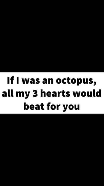 Love #quotes