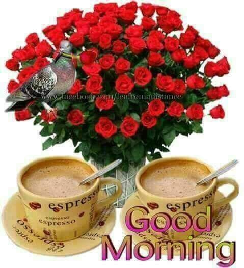 When you think you can't go on, force yourself to keep going.  Your success is based on persistence, not luck.  There are two ways to be happy- Change the situation or change your minds towards it. GM