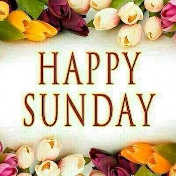 HAPPY SUNDAY #sunday #sundaymorning #wishes #roposo-wishes #goodnight-wishes #wish #wishlist